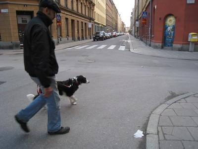 sweden 119.jpg